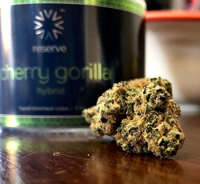 cherry gorilla by verano
