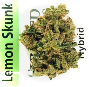 lemon skunk bud on sunmed label on green stripe