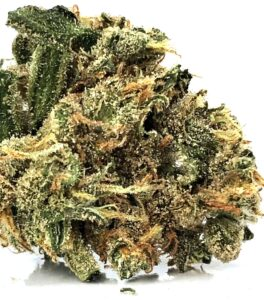 lemon skunk bud shown in detail with clusters of red stigma and dark and light green leaves with yellowish crystalline trichomes