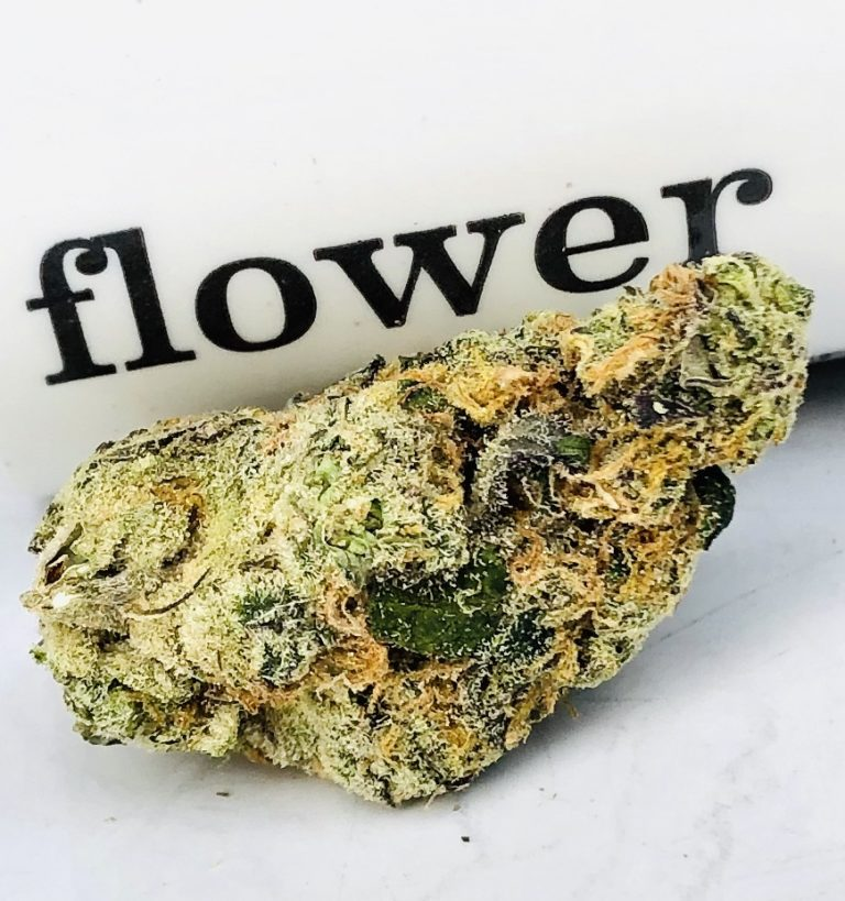 wizard gum bud in front of curio container displaying the word flower in dark contrast to the white background