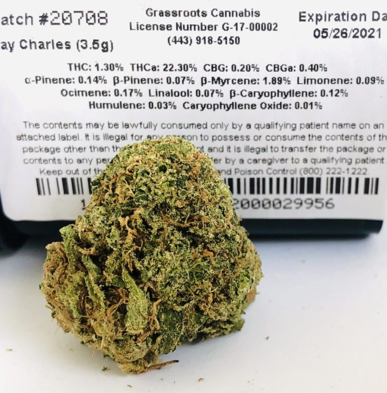 ray charles strain by grassroots label