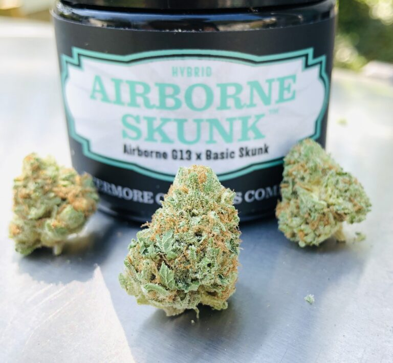 3 buds of airborne skunk by evermore in front of evermore container in sunlight