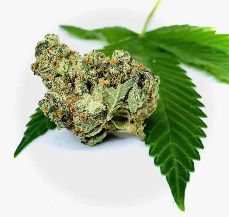 bud of garlic cookies by grassroots positioned on the edge of a cannabis leaf contrasted by a white background