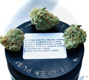 three buds of airborne skunk by evermore ontop of lid with terpene label