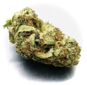 bud of phantom cookies with hints of purple on sugar leaves and rusty red trichomes
