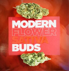 cindarella 99 buds by harvest on red modern flower box