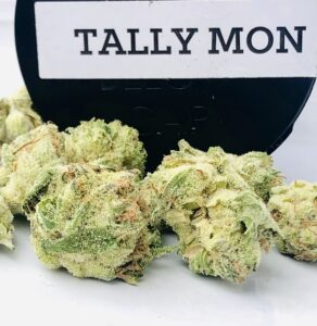closeup of tally mon buds by strane