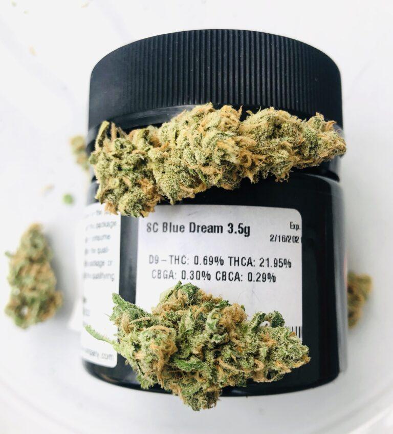 santa cruz blue dream evermore potency label with buds