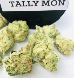 tally mon buds alternate