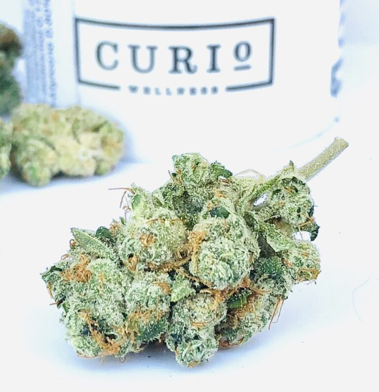 gorgeous bud of mk ultra by curio