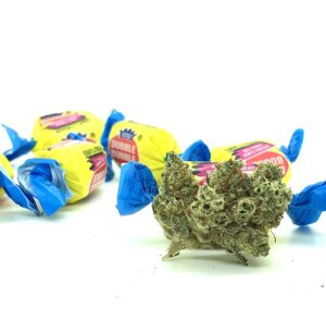 bud of bodega bubblegum with actual bubble gum with yellow blue and red wrapper twisted at the ends