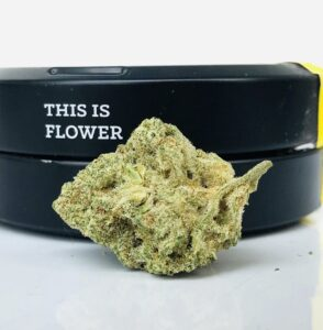 bud of white mac by strane in front of this is flower label
