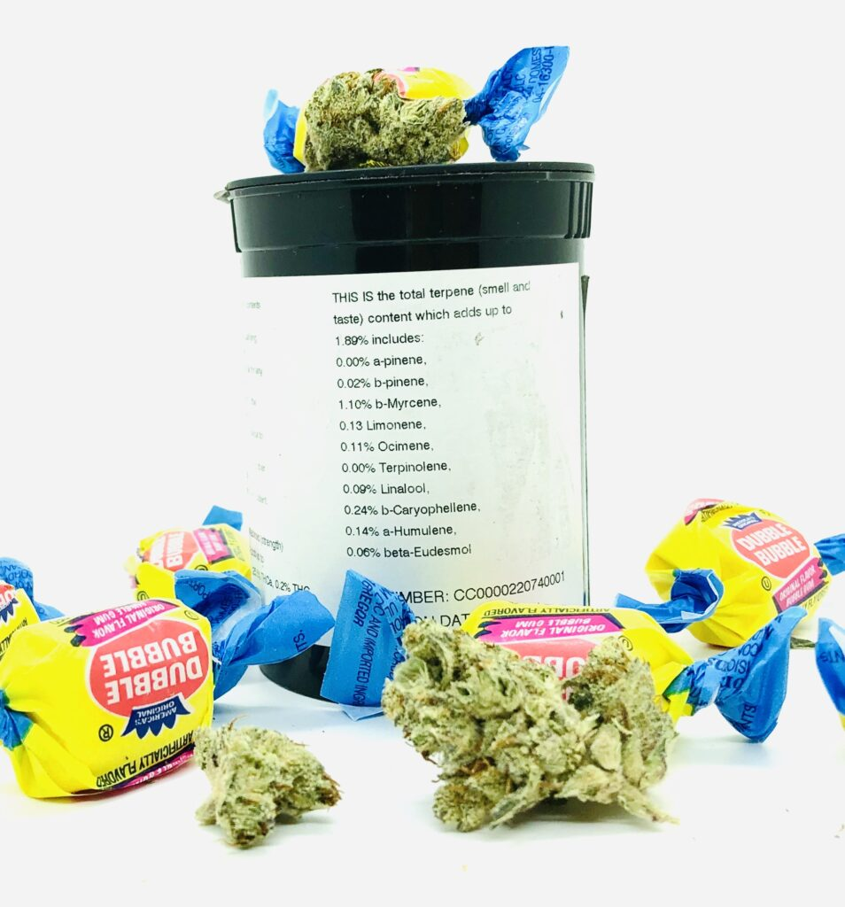 buds of bodega bubblegum pictured with pieces of bubble gum