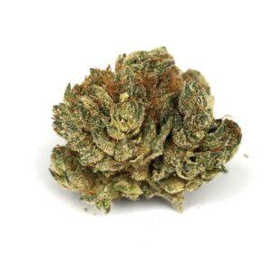 bushy bud of chem 91 x ad by grow west