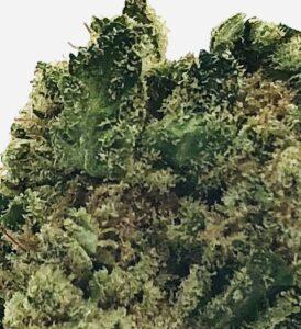 close up of element strain