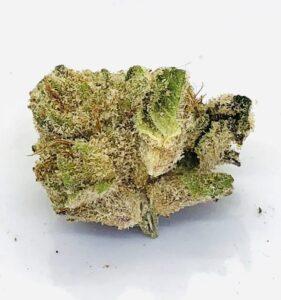 detail photo of jack white strain bud section
