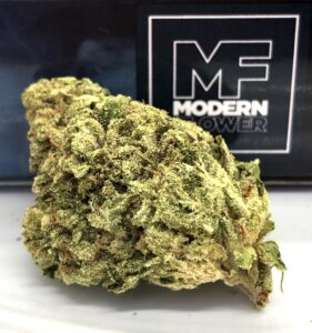 gorgeous large roughly trimmed nug of element by modern flower in front of modern flower box with small mf logo in right hand corner