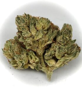 olive green colored bud of chem 91 x ad