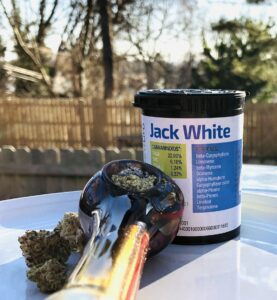 outdoor photo of buds of jack white strain pictured with a packed multi-colored glass bowl with a blue green and mostly white forwardgro container in the background