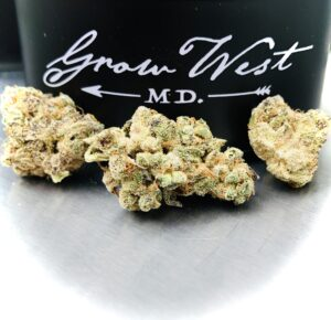 3 buds of grape pearls by grow west