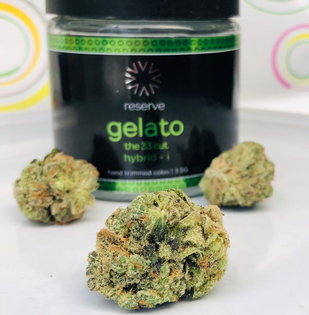 beautiful green bud o f gelato with other buds and verano jar in background