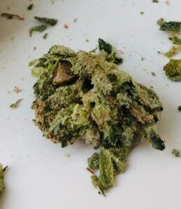 closeup of seed inside bud of island sweet skunk x sour diesel by gleaf
