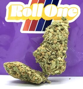 critical sensi star buds in front of roll on ziplock bag