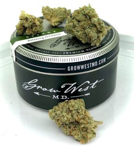 triangle kush by grow west with container