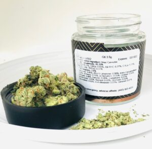 buds of bud of G6 Jet Fuel by Verano