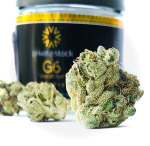 buds of g6 in a line in front of verano jar