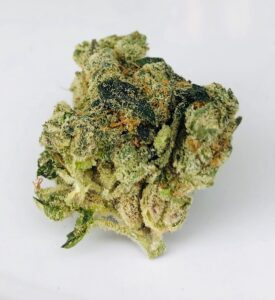 gorgeous green bud of G6 Jet Fuel by Verano