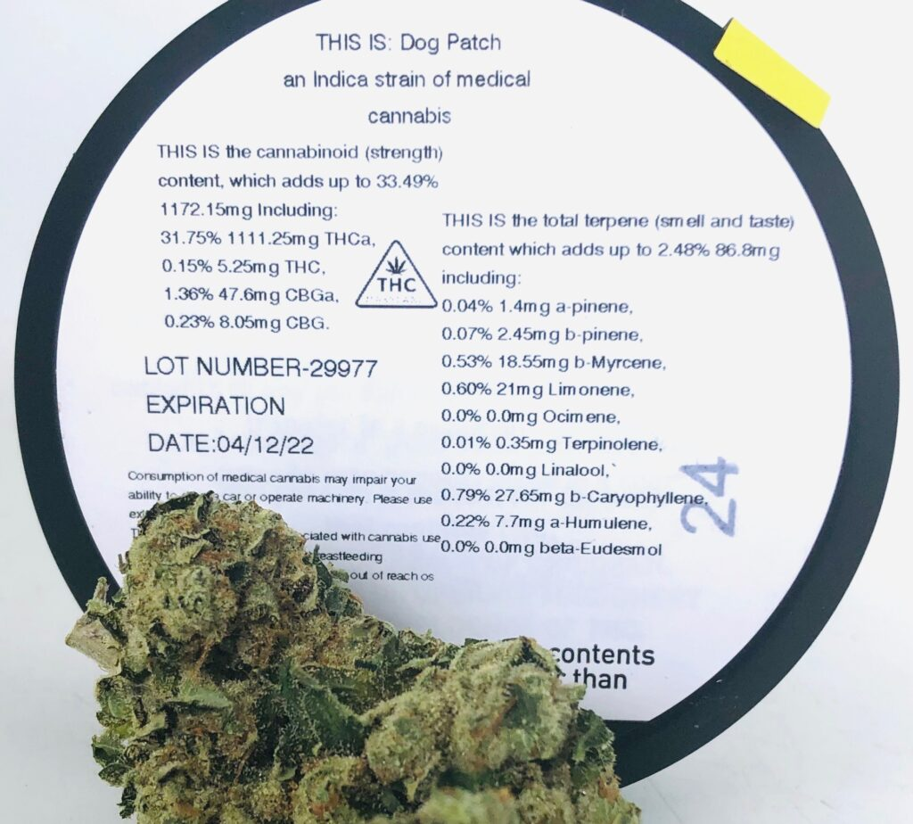 close shot of terpene and potency testing label for dog patch pictured with bud of dog patch at the bottom of the frame