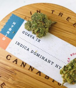 detail image of guava ix strain on wooden lid