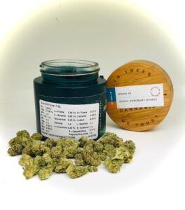guava ix strain in front of jar displaying terpene levels and potency