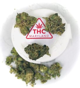 cookie face buds with red maryland thc label in the center