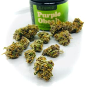 buds of purple obeah by evermore