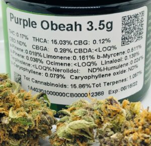 closer detail of testing label for purple obeah with buds in the foreground