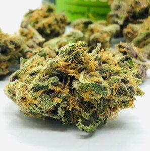 detail photo of purple obeah bud