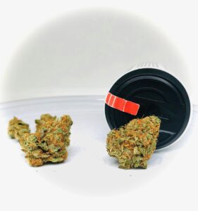 two buds of shoki x 87 limepop by curio with curio with red sativa strip on black lid