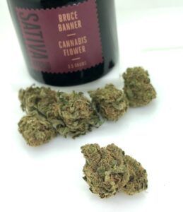 bruce banner buds with 1937 black jar in the background