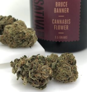 bruce banner strain buds by 1937