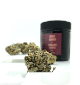 detail image of bruce banner bud with maroon 1937 jar in background