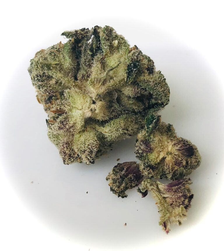 underside where purple leaves are visible on gummiez bud by strane